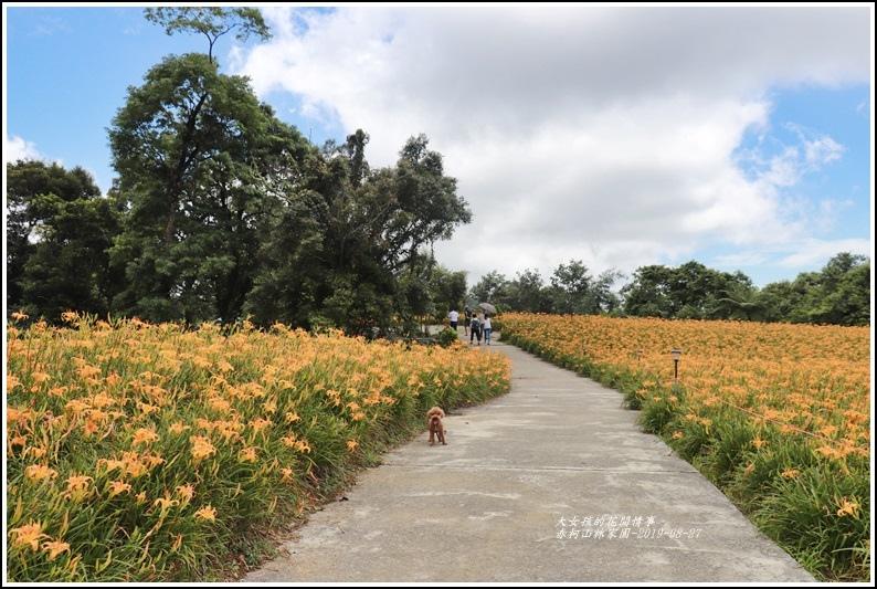 赤柯山林家園-2019-08-07.jpg