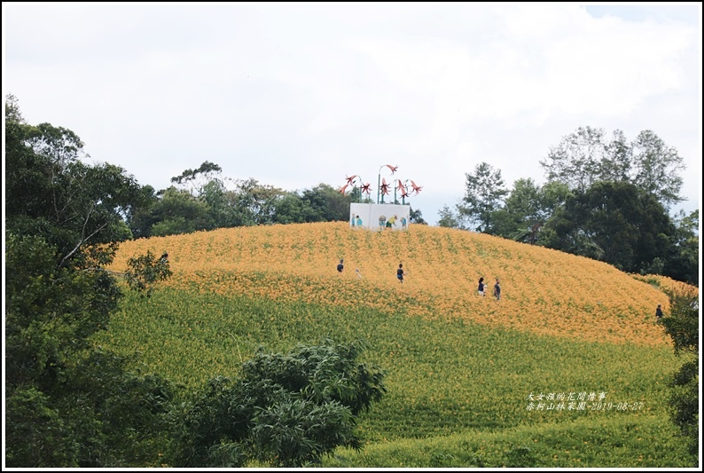 赤柯山林家園-2019-08-12.jpg