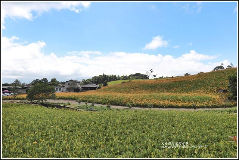 赤柯山山區-2019-08-07.jpg
