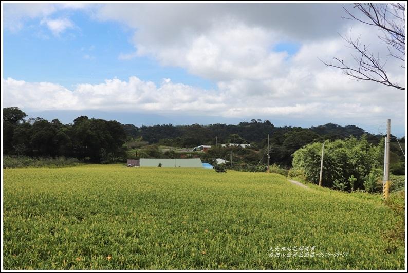 赤柯山山區-2019-08-13.jpg