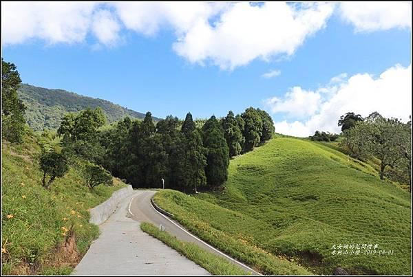 赤柯山小徑-2019-08-03.jpg