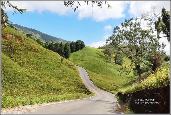 赤柯山小徑-2019-08-07.jpg