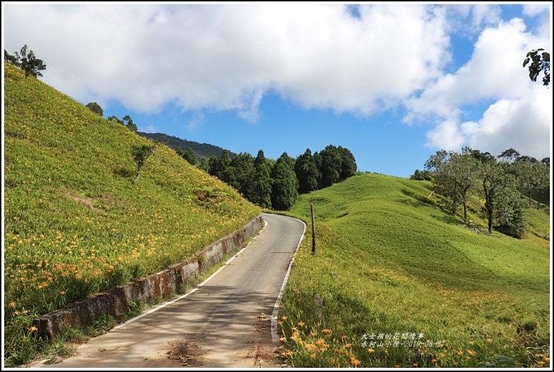 赤柯山小徑-2019-08-11.jpg