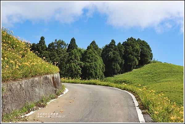 赤柯山小徑-2019-08-12.jpg