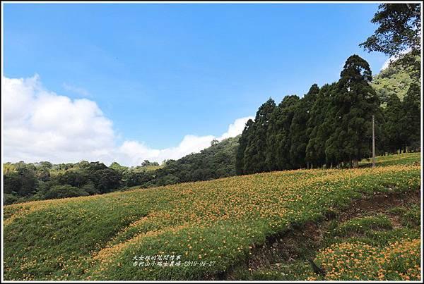 赤柯山小瑞士農場-2019-08-01.jpg