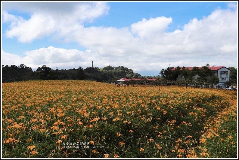 赤柯山小瑞士農場-2019-08-02.jpg