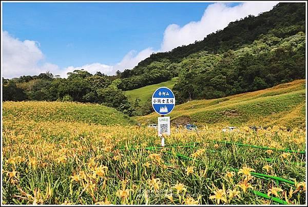 赤柯山小瑞士農場-2019-08-04.jpg