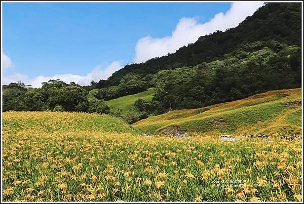 赤柯山小瑞士農場-2019-08-05.jpg