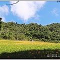赤柯山小瑞士農場-2019-08-08.jpg