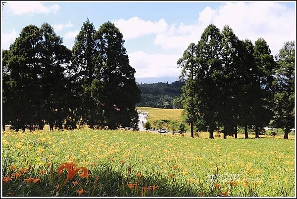 赤柯山小瑞士農場-2019-08-11.jpg