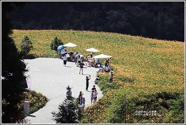 赤柯山小瑞士農場-2019-08-12.jpg