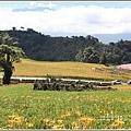 赤柯山小瑞士農場-2019-08-18.jpg