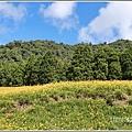 赤柯山小瑞士農場-2019-08-20.jpg