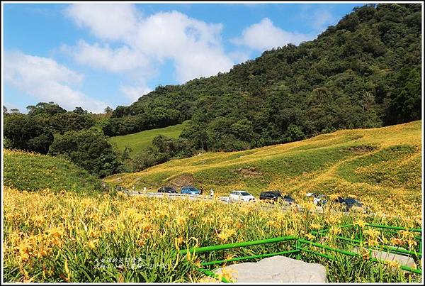赤柯山小瑞士農場-2019-08-22.jpg