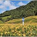 赤柯山小瑞士農場-2019-08-23.jpg