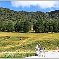 赤柯山小瑞士農場-2019-08-26.jpg