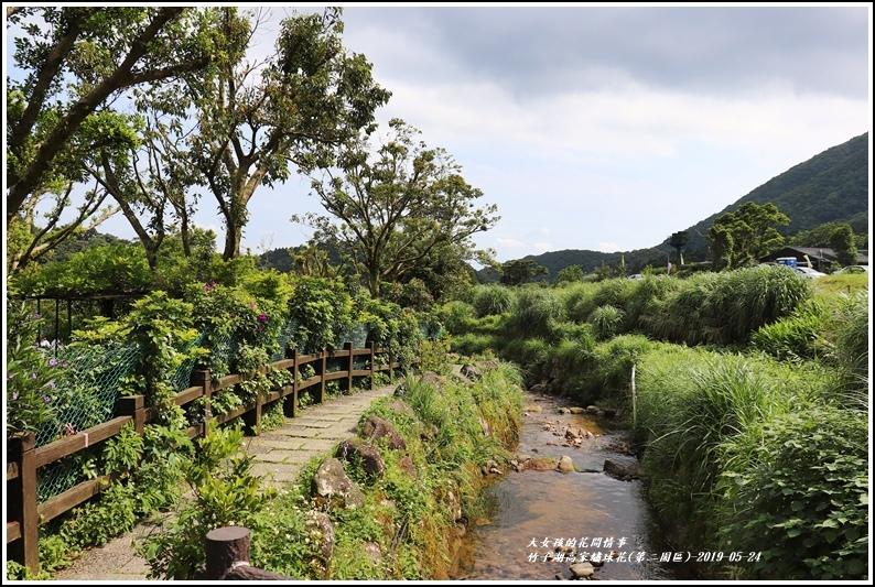 竹子湖高家繡球花(第二園區)-2019-05-01.jpg