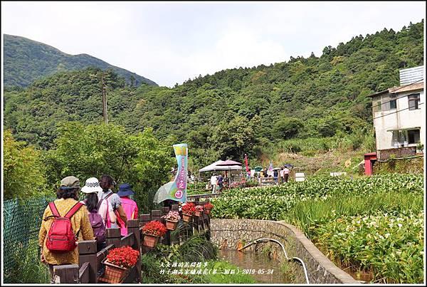 竹子湖高家繡球花(第二園區)-2019-05-02.jpg