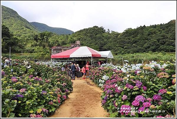 竹子湖高家繡球花(第二園區)-2019-05-09.jpg