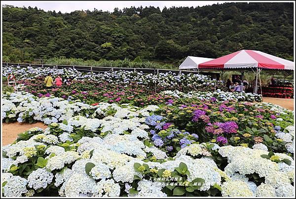 竹子湖高家繡球花(第二園區)-2019-05-23.jpg