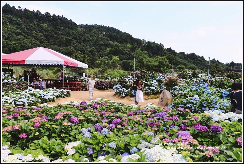 竹子湖高家繡球花(第二園區)-2019-05-24.jpg