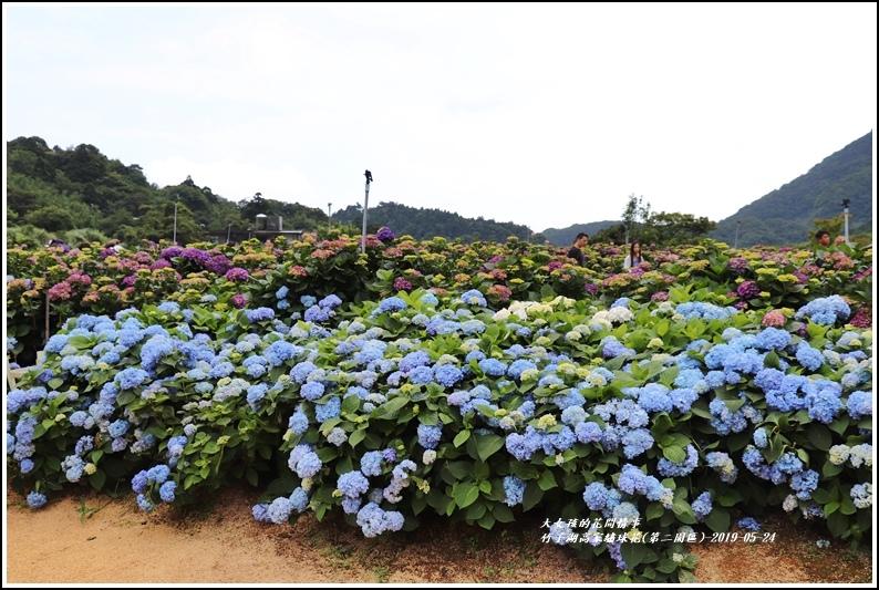 竹子湖高家繡球花(第二園區)-2019-05-29.jpg