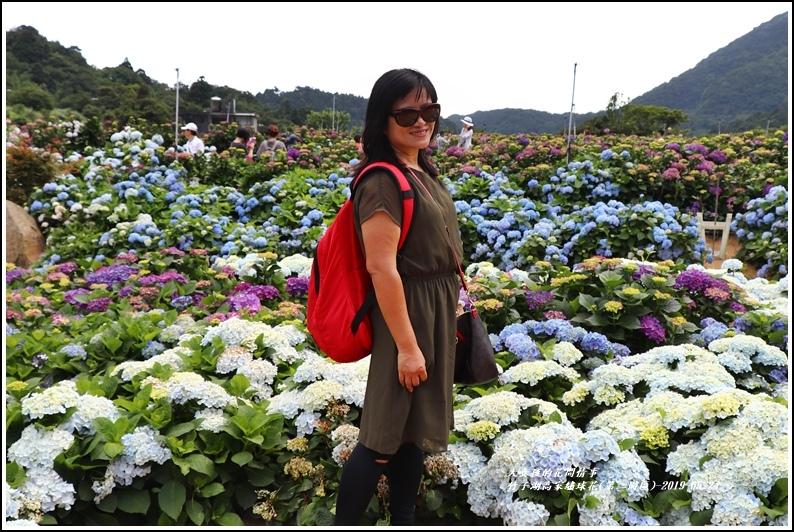 竹子湖高家繡球花(第二園區)-2019-05-46.jpg