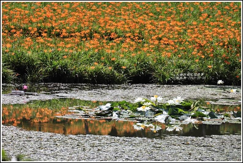 竹林湖-2019-09-08.jpg