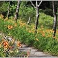 竹林湖-2019-09-20.jpg