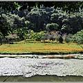 竹林湖-2019-09-30.jpg