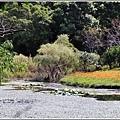 竹林湖-2019-09-33.jpg