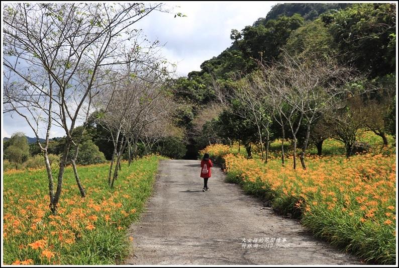 竹林湖-2019-09-44.jpg