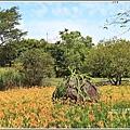 竹林湖-2019-09-45.jpg