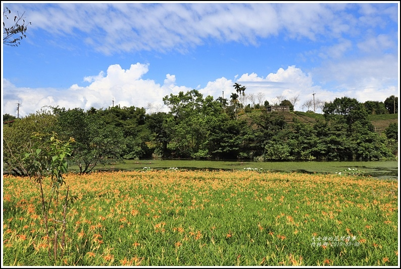 竹林湖-2019-09-48.jpg