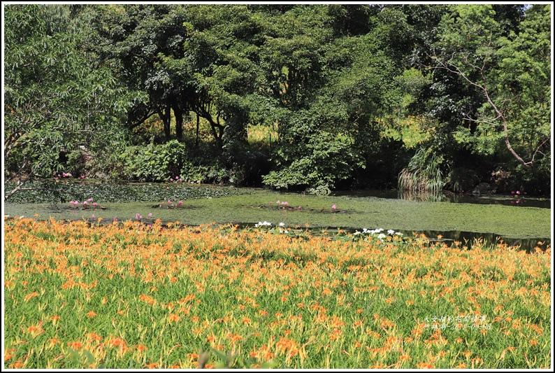 竹林湖-2019-09-49.jpg