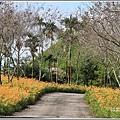 竹林湖-2019-09-54.jpg