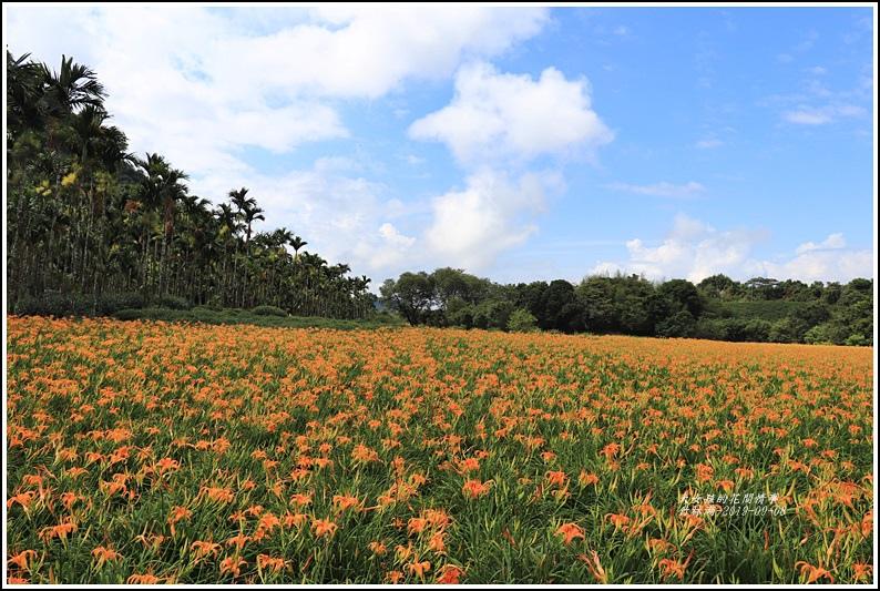 竹林湖-2019-09-55.jpg