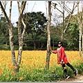 竹林湖-2019-09-58.jpg