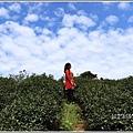 竹林湖-2019-09-69.jpg