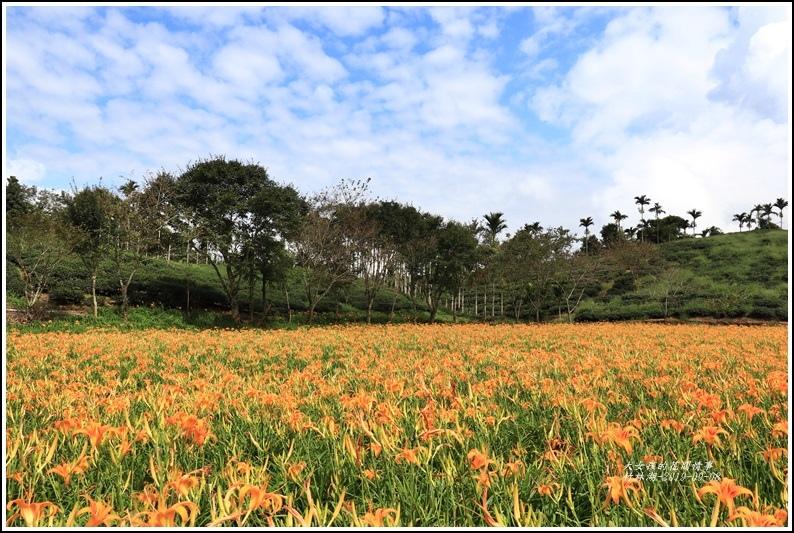 竹林湖-2019-09-72.jpg