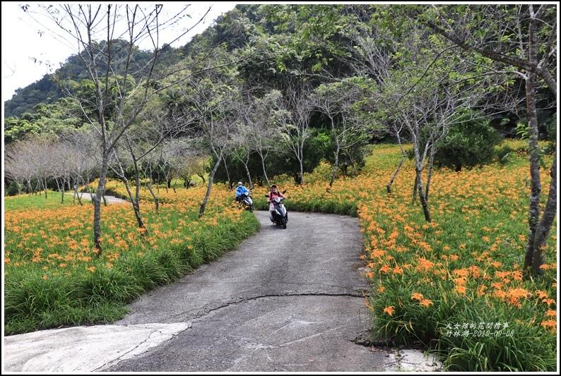 竹林湖-2019-09-79.jpg