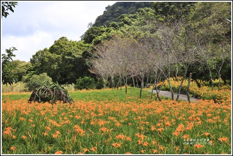 竹林湖-2019-09-80.jpg