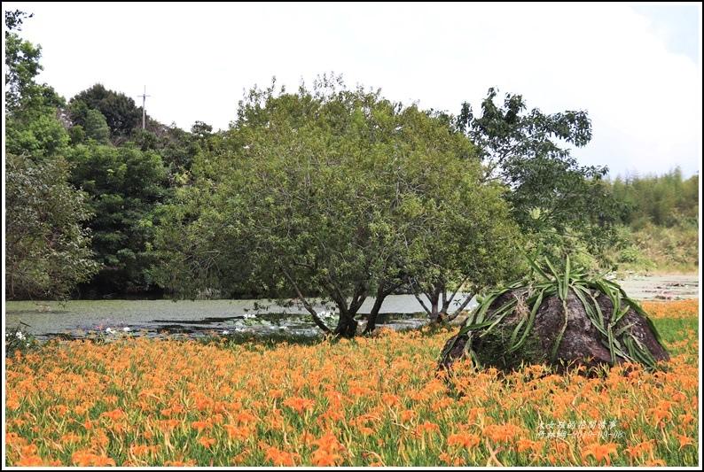 竹林湖-2019-09-82.jpg