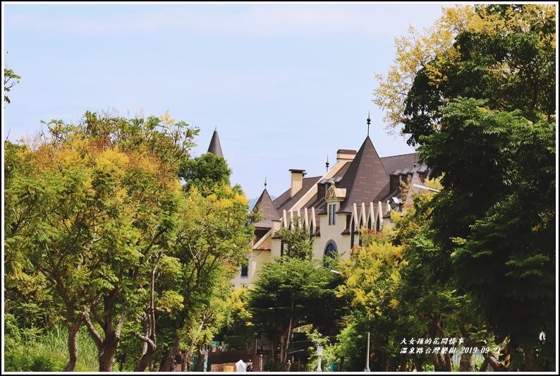 瑞穗溫泉路台灣欒樹-2019-09-01.jpg