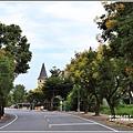瑞穗溫泉路台灣欒樹-2019-09-07.jpg