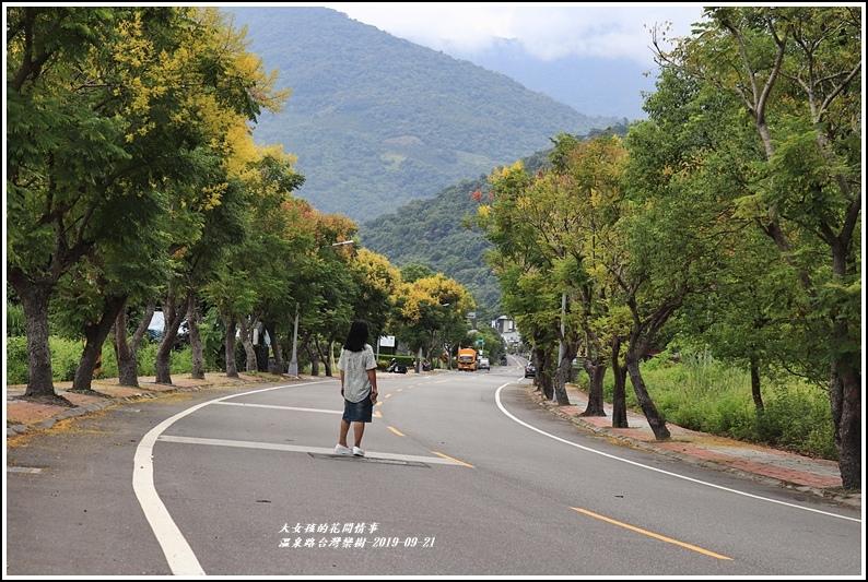 瑞穗溫泉路台灣欒樹-2019-09-13.jpg