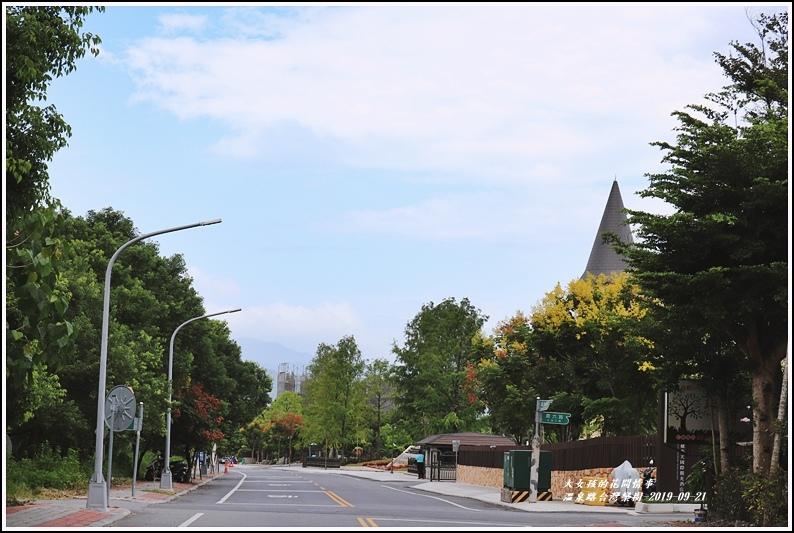 瑞穗溫泉路台灣欒樹-2019-09-15.jpg