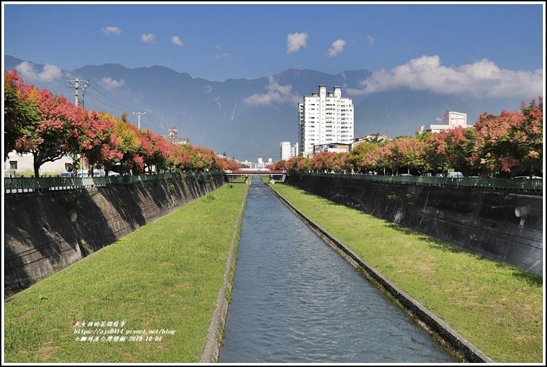 七腳川溪台灣欒樹-2019-10-07.jpg