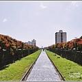 七腳川溪台灣欒樹-2019-10-28.jpg