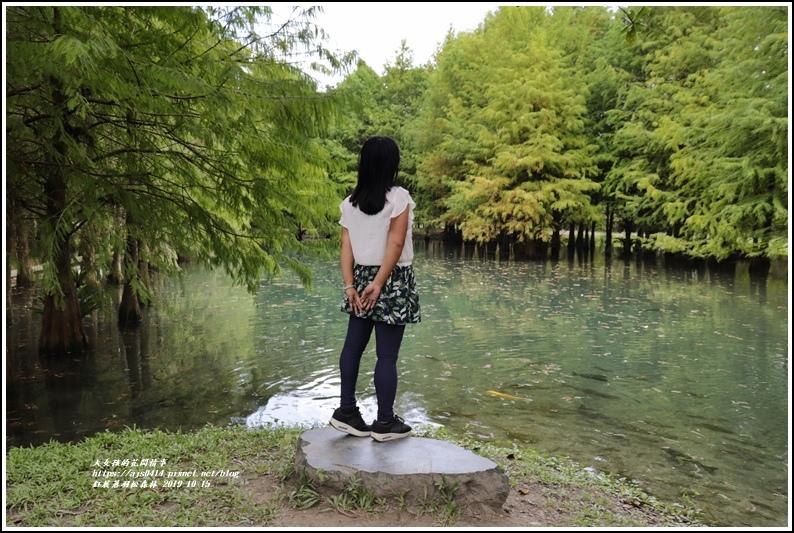 鈺展落羽松森林-2019-10-47.jpg